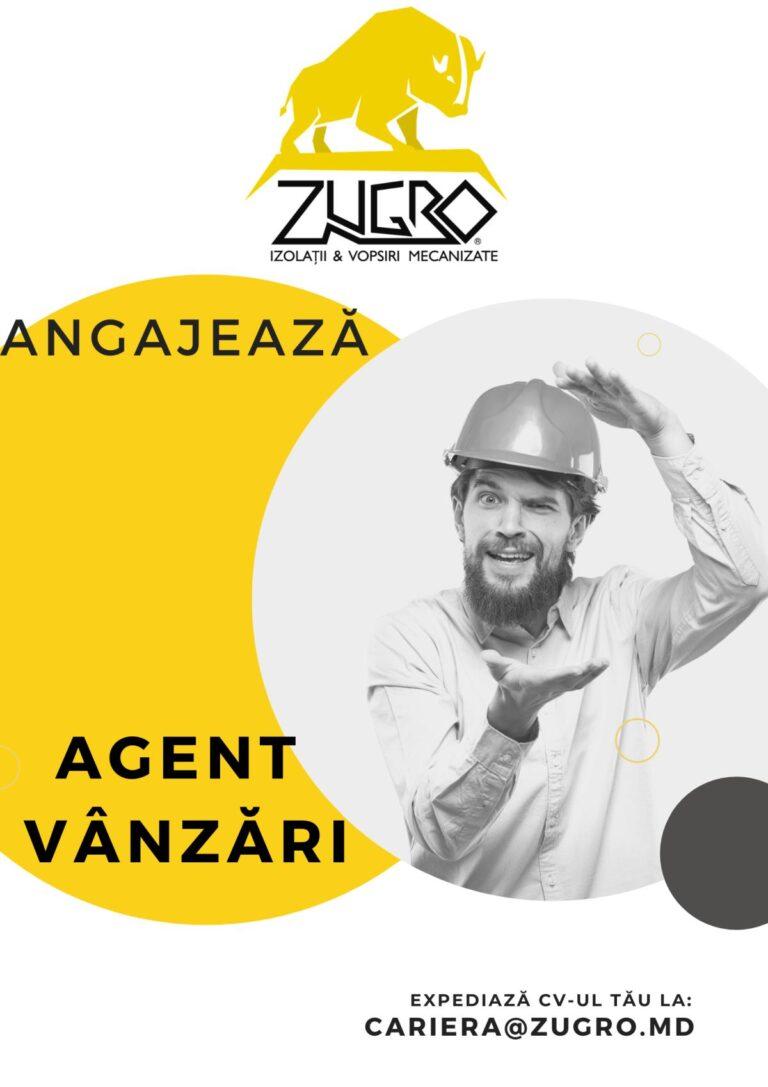Read more about the article Căutăm agent în vânzări
